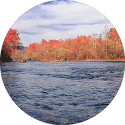 River view in fall
