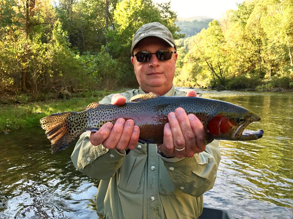 Large Caught Fish